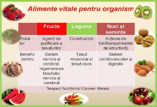alimente-vitale-pentru-organism